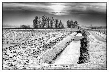 winter in de Hoeksche Waard van Roel Dijkstra