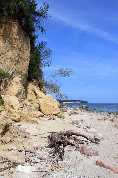 Steilufer von Ostsee Bilder