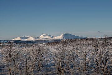 Winter landschap van Marco Lodder