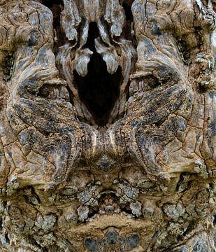 open face van Ryszard Tychawski
