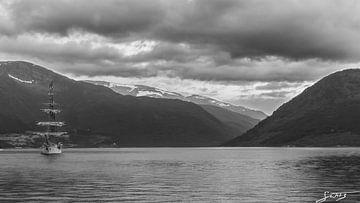 Europa in Fjord (II) van Sander Witsenburg