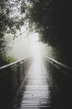 pad door de mist van Ennio Brehm