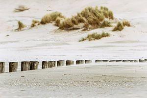 Strand van Ameland van Sanneke Kortbeek