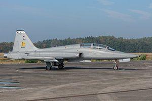 Northrop NF-5B Freedom Fighter van de Koninklijke Luchtmacht tentoongesteld op het platform van het