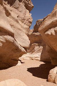 Negev woestijn van Celine Dhont