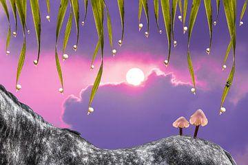 Pferderücken mit Pilzen von Wendy Boon