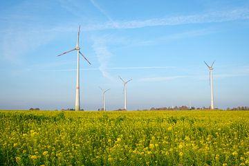 Windmühlen auf dem Feld von Johan Vanbockryck