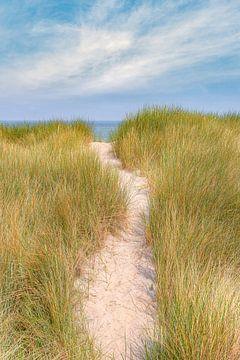 Chemin à travers les dunes sur Michael Valjak