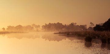 Strabrechtse Heide 227 van Desh amer