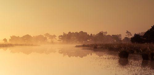 Strabrechtse Heide 227