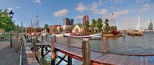 Rotterdam Veerhaven van Pieter Navis