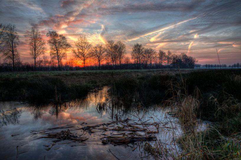 zons opkomst van Lia Altink
