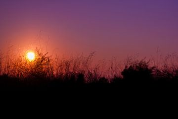 Zonsondergang van Evelyne Renske
