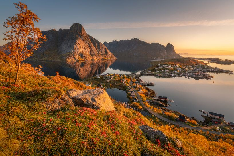 Automne dans les Lofoten sur Edwin Mooijaart