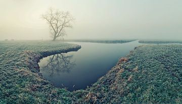 Misty morning van Halma Fotografie