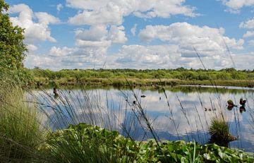 Wolken Reflectie in beekje van Martine Moens