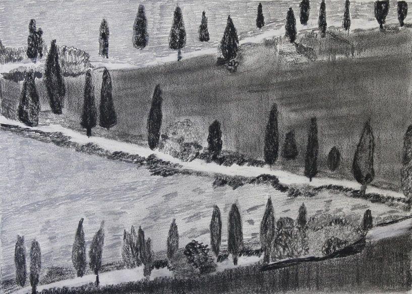 Pijnbomen in Toscane (Pines in Tuscany, Kiefern in Toskana , Pins en Toscane) van Catharina Mastenbroek
