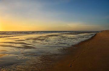 Spuren im Sand von Claudia Moeckel