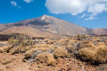 Vulkaan El Teide, Tenerife van Marianne Rouwendal