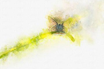 Papillon 7 sur Silvia Creemers