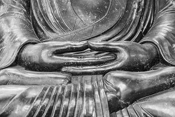 Handen van Buddha van Marcel Derweduwen