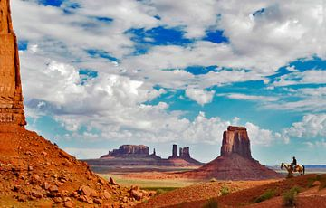 Ansicht des Monument Valley, Vereinigte Staaten. von Ron van der Stappen