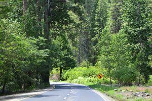 Yosemite van Wessel Smit