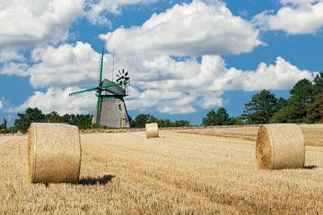 Mühle auf Amrum im Sommer von Markus Lange