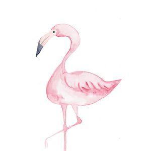 Flamingo van
