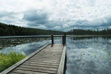 Meer in Finland van