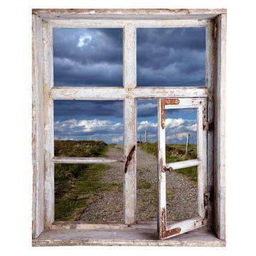 Uitzicht uit het raam van Jürgen Wiesler