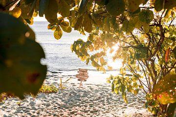 Happily ever after starts here, zonsondergang op strand in Fiji van Niels Rurenga