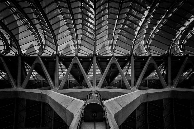 Lijnen met lift in zwart-wit  van Bert Meijer
