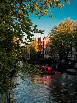 Green Amsterdam van willemien kamps