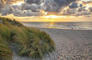 Strandopgang Texel / Beach entrance Texel van