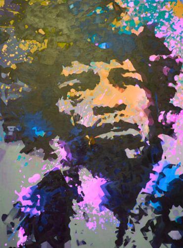 Jimi Hendrix - Splash - Yellow - Pink - 3 Colours van Felix von Altersheim