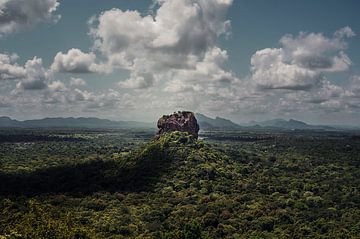 Lions Head Sri Lanka van Sam van Kempen