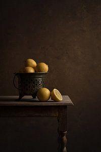 Lemons van Carolien van Schie