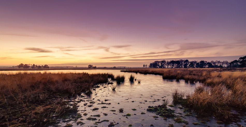 Strabrechtse Heide 163