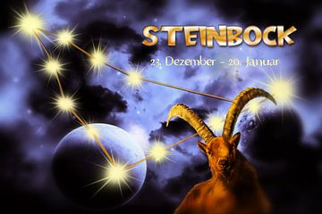 sterrenbeeld - Steenbok van Christine Nöhmeier