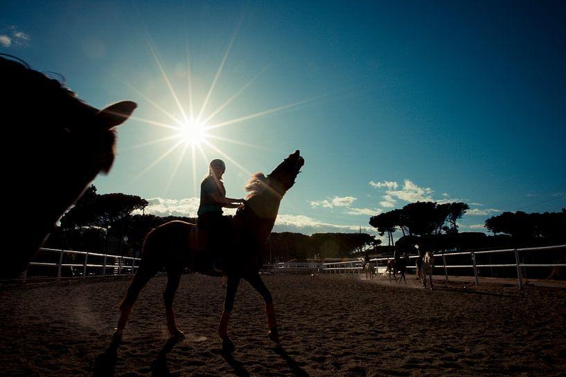 Paard en ruiter bij zonsondergang van Tycho Müller