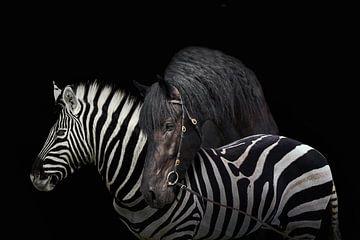 Een zebra en een paard op een zwarte achtergrond. van Elianne van Turennout