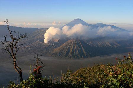 Uitzicht op de Bromo vulkaan