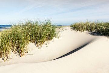 Prachtvolle Dünen auf Borkum von Reiner Würz / RWFotoArt
