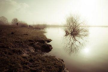Landschaft im Nebel von Bert-Jan de Wagenaar