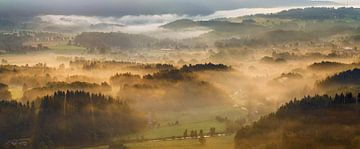 Misty morning in Rudawy hills, Poland van