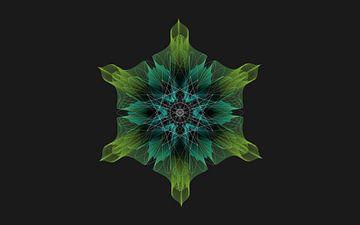 Geometrisch bloem von ymkje veenstra