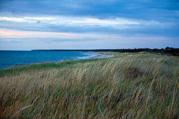 Oostzee - duin en strand bij Ahrenshoop / Darß bij zonsondergang van t.ART