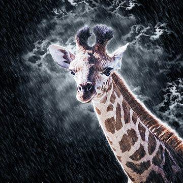 Een vrolijk gezicht in de regen van Fotografie Jeronimo
