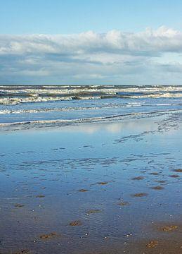 Der Strand an der holländischen Küste von Discover Dutch Nature